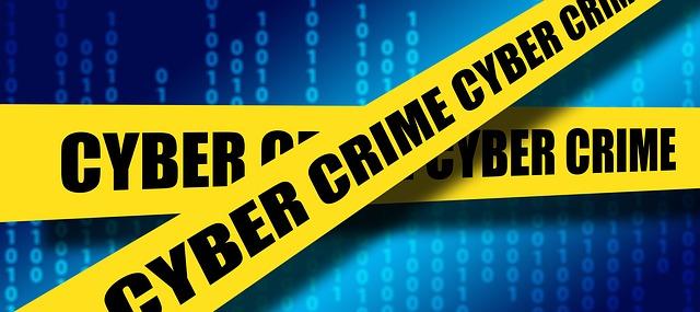 サイバーハッカー
